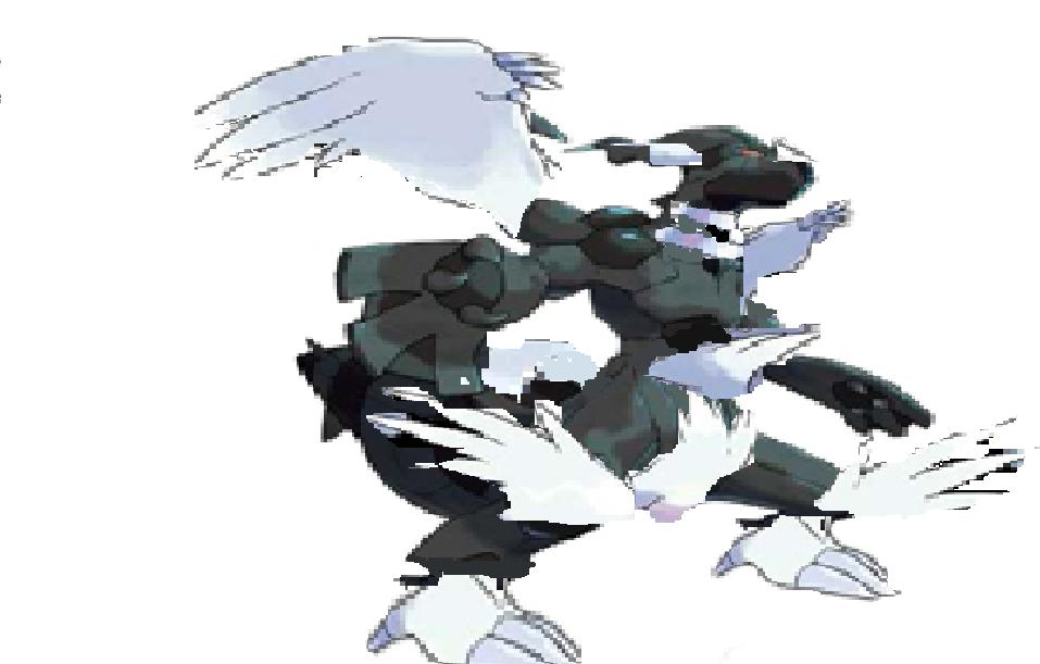zekrom reshiram combined - photo #23