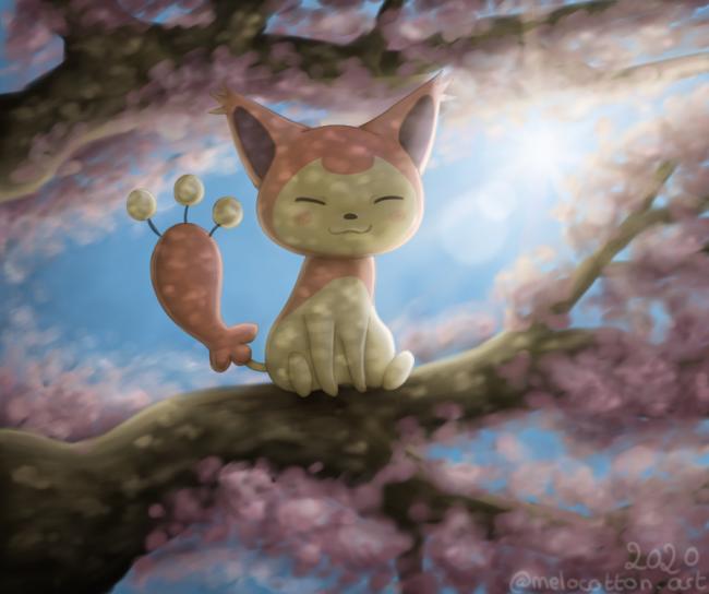 Skitty dans les fleurs ! (draw this again)